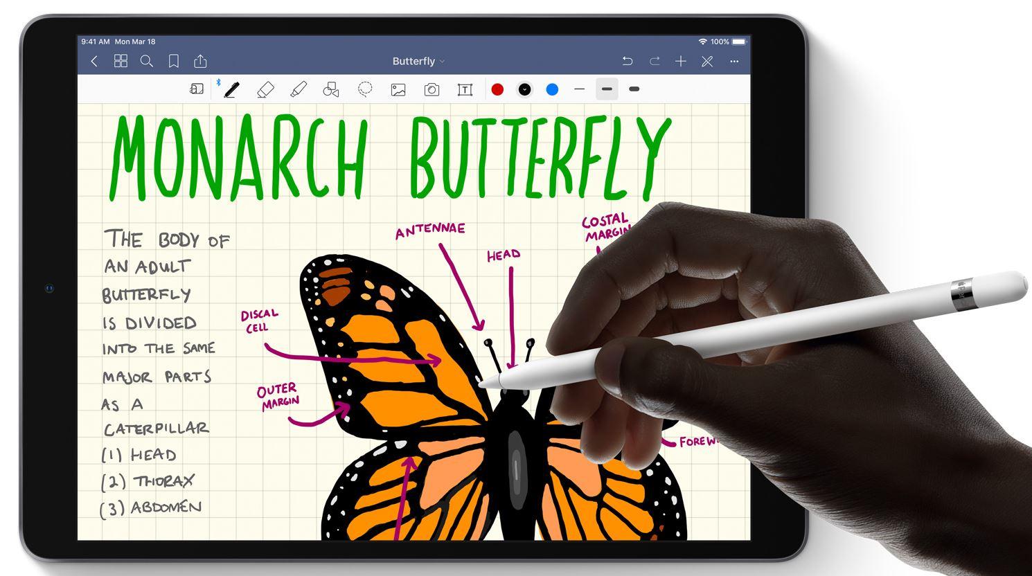 Apple iPad Air (2019) - Grafika