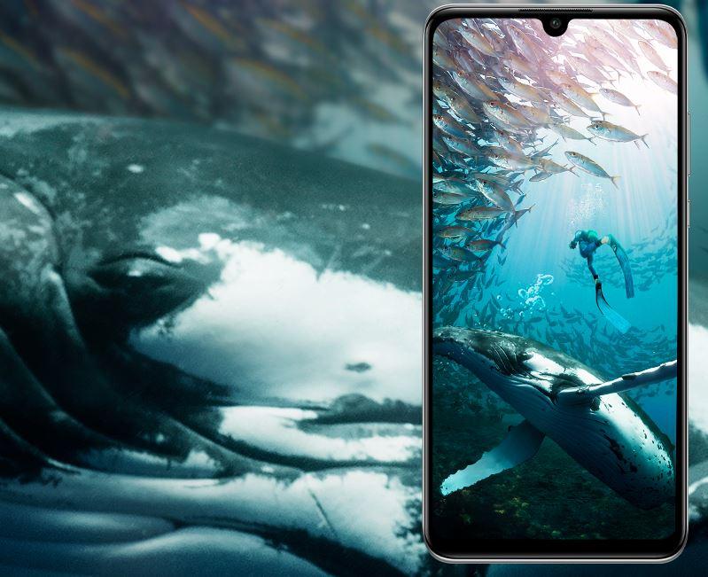 Huawei P30 Lite Dual SIM - ekran